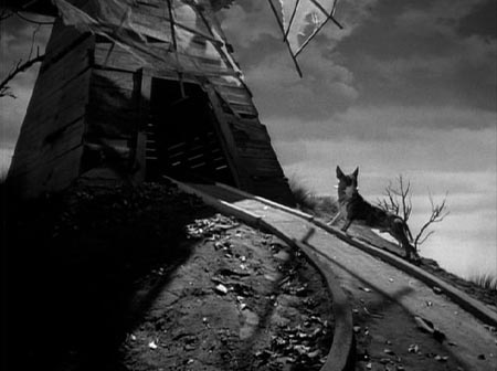 Short Frankenweenie 1984 366 Weird Movies