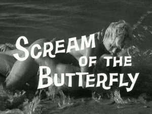Still from Scream of the Butterfly (1965)