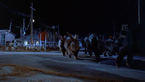 Still from Night of the Lepus (1972)