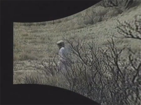 Still from Wax, or the Discovery of Television Among the Bees (1991)